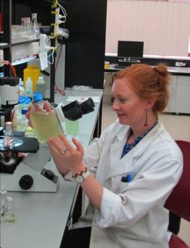 Willis in lab