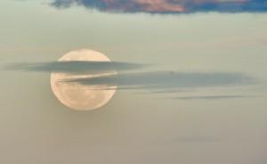 moon-7035-large