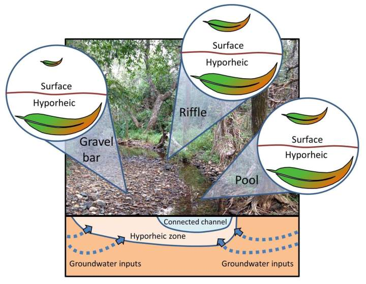 When streams dry, do important ecological processes still occur?