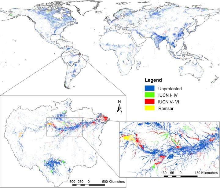 Global wetland conservation