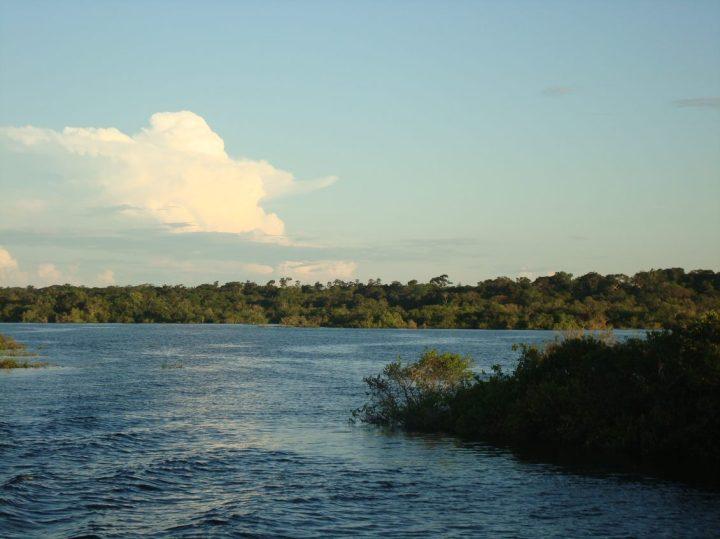 Amazon River 1