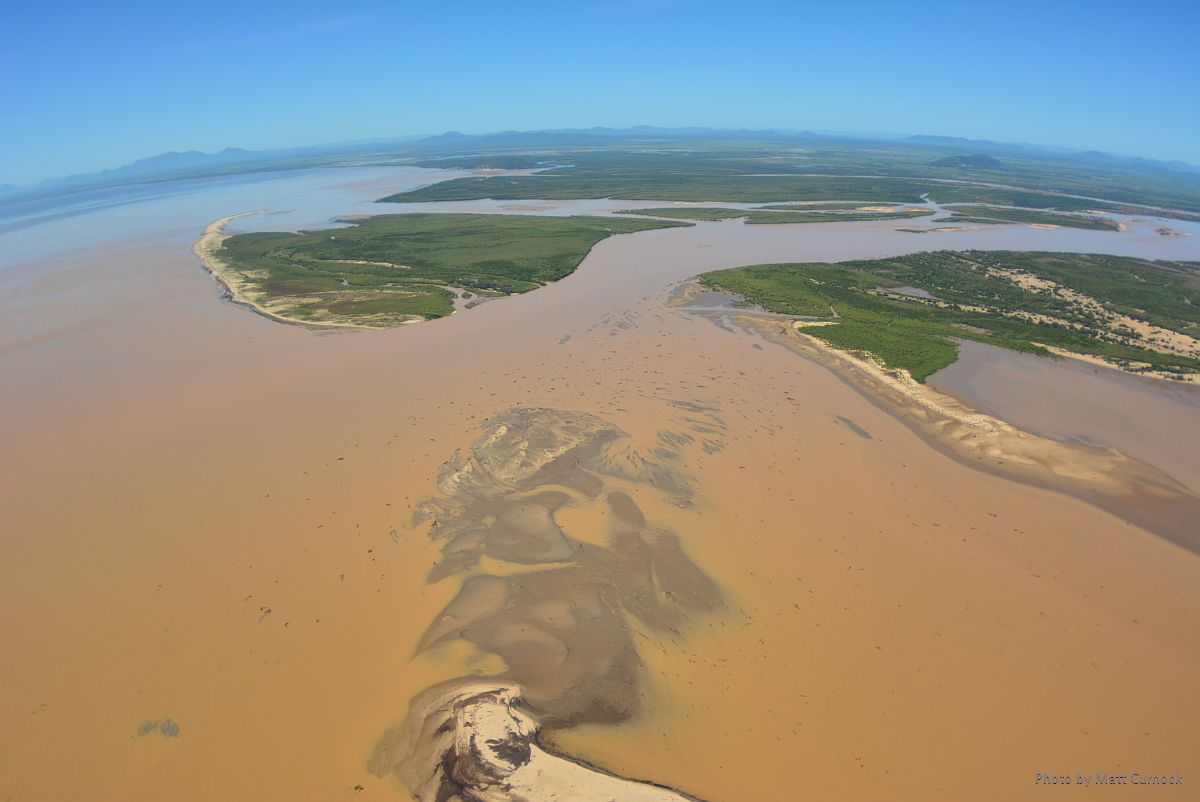 Burdekin River mouth close up-media