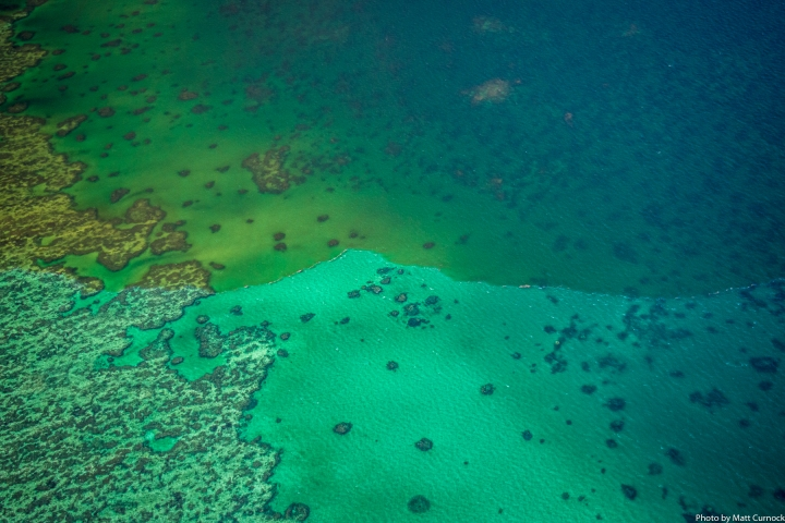 Timeframes – another key element for planning Great Barrier Reef recovery interventions