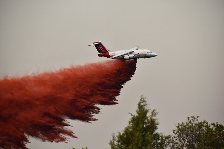 FIREFIGHTING CHEMICALS: HOW ARE THEY AFFECTING OUR NATIVE SPECIES? (EXPERT OPINIONSWANTED)
